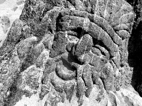 One of the faces carved into rocks on Coney Island's Beach. September 25, 2010.  Photo © Bruce Handy/Pablo 57 via flickr