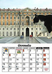 Italia in Miniatura Cat Calendar
