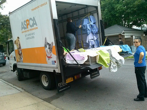 ASPCA Wheels of Hope