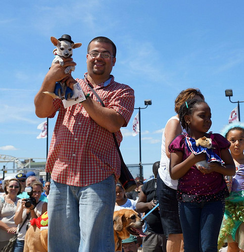 Paquito the Chihuahua and Fluffy the Guinea Pig were among the winners of the Pet Costume Contest in 2012. Photo via Deno's Wonder Wheel Park
