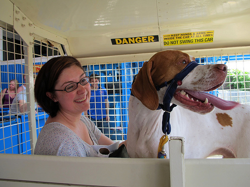 Soapy the Pointer Rides the Wonder Wheel