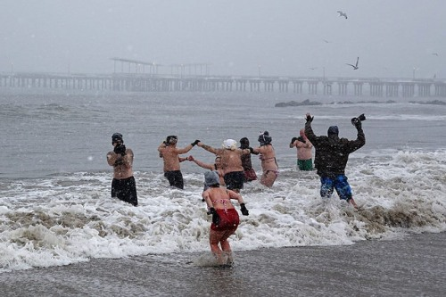 Coney Island Polar Bears Blizzard Swim